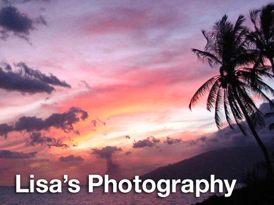 Lisa's Photography